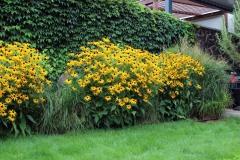kvetinový-záhon-pri-kamennom-plote_0